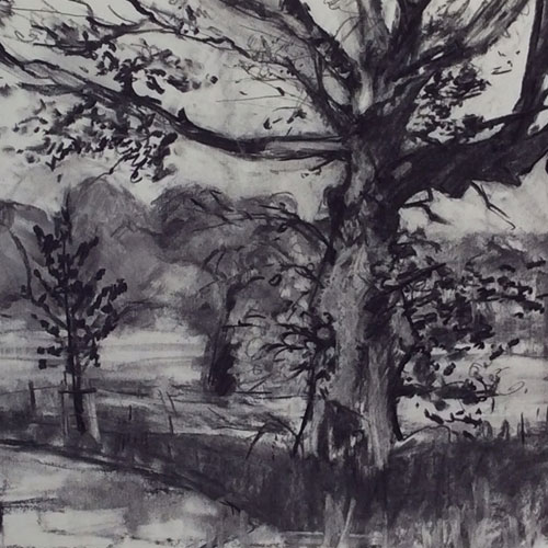 Olivia Irvine, Drawings